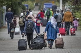 Vluchtelingenrecht